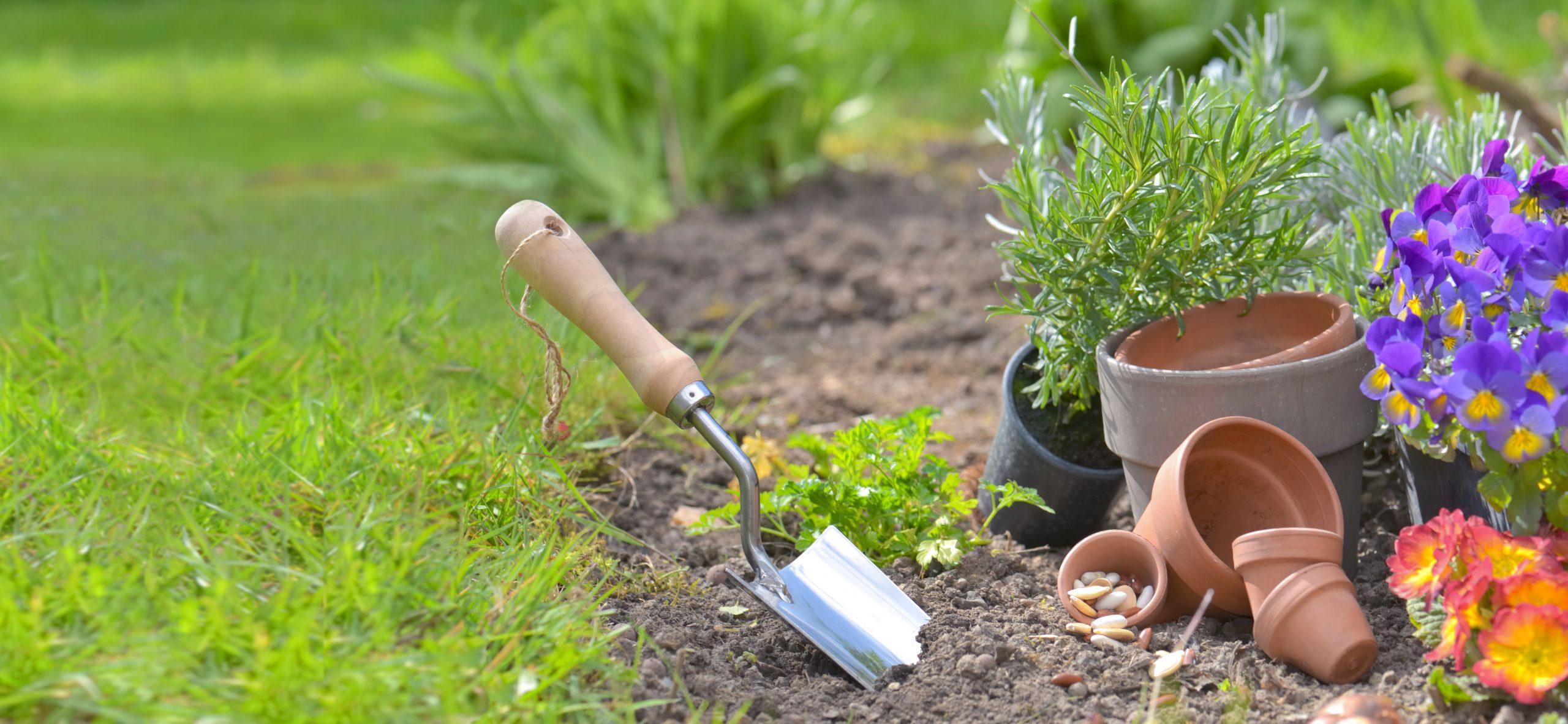 Gardening Intervention Ideas